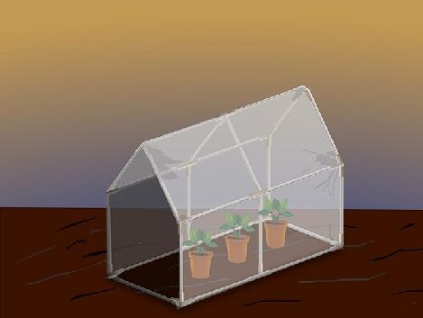 ساخت گلخانه حانگی