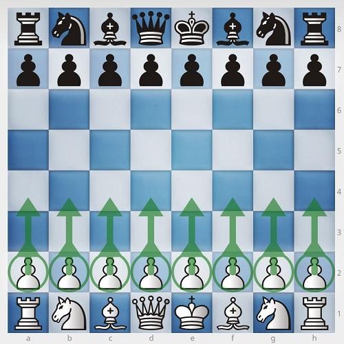 چیدن مهره های شطرنج3