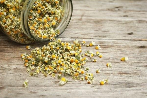 [عکس: chamomile-tea-2-600x399.jpg]