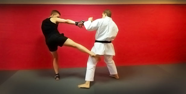 http://cdn.karatebyjesse.com/wp-content/uploads/mma_oliver_jesse_enkamp_4.jpg