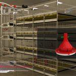 سیستم پرورش در قفس مرغ گوشتی با تهویه سقفی[01-03-32]