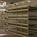 پرورش مرغ گوشتی در قفس[01-04-11]