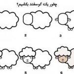 گوسفند5
