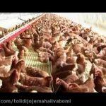 سالن مرغداری مجهز برای تولید تخم مرغ[01-02-27]