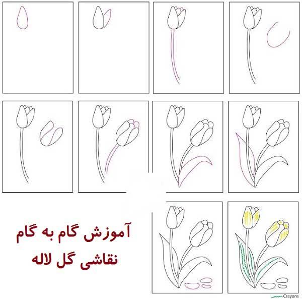 نقاشی-گل-لاله