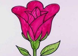 نقاشی-گل--برای-کودکان