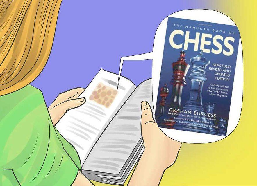 شطرنج حرفه ای 9