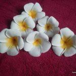 نمونه گلسازی با فوم 5