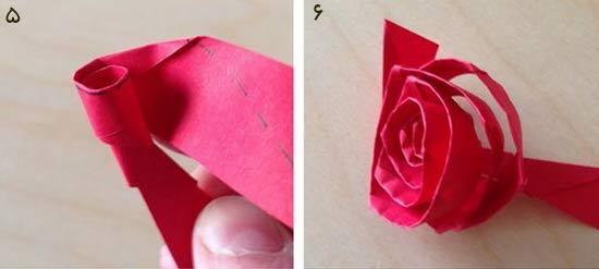 گل رز3