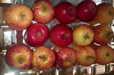 مربای-سیب01