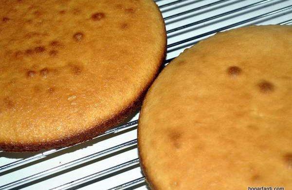 طرز تهیه کیک وانیلی 16