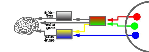 https://cms-assets.tutsplus.com/uploads/users/108/posts/20549/image/color-fundamentals-shading-9-1.png