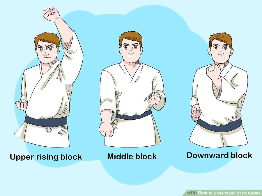 https://www.wikihow.com/images/thumb/3/3b/Understand-Basic-Karate-Step-9-Version-2.jpg/aid25376-v4-900px-Understand-Basic-Karate-Step-9-Version-2.jpg