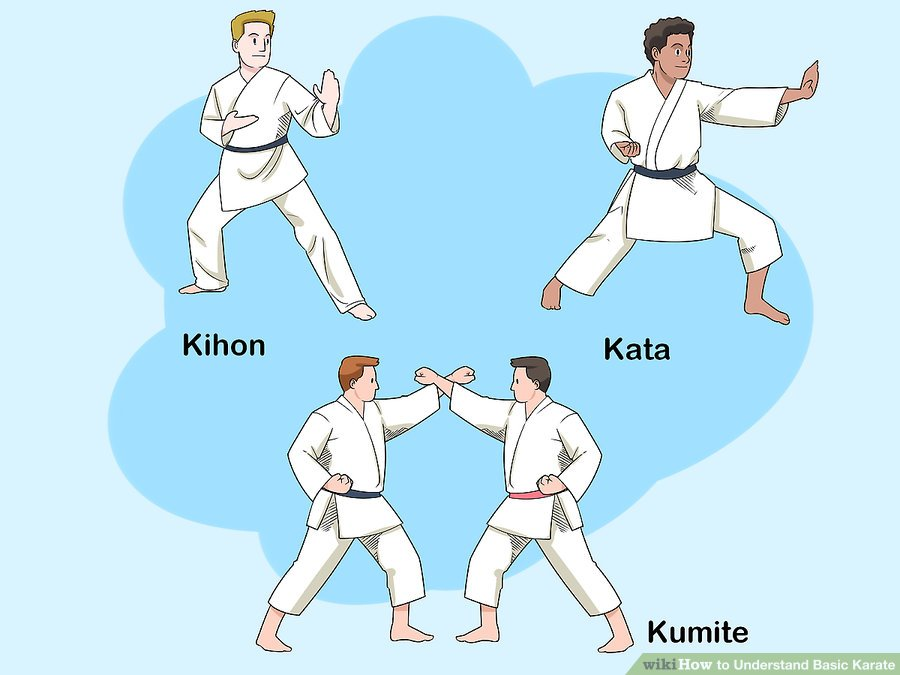 https://www.wikihow.com/images/thumb/4/4f/Understand-Basic-Karate-Step-2-Version-2.jpg/aid25376-v4-900px-Understand-Basic-Karate-Step-2-Version-2.jpg