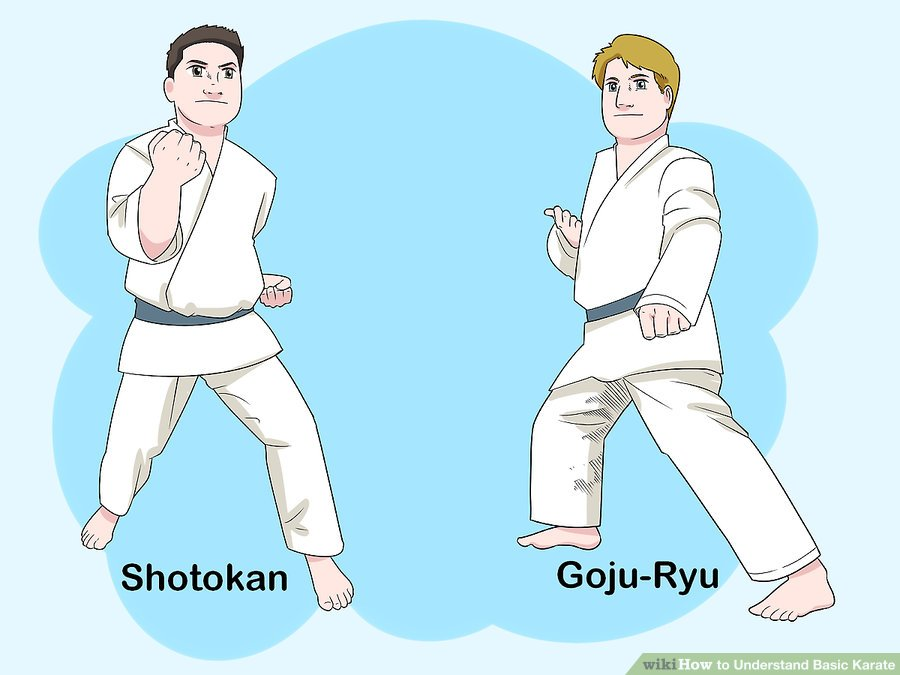 https://www.wikihow.com/images/thumb/6/69/Understand-Basic-Karate-Step-1-Version-2.jpg/aid25376-v4-900px-Understand-Basic-Karate-Step-1-Version-2.jpg