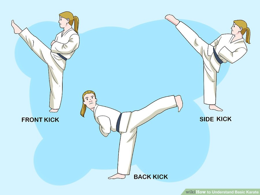 https://www.wikihow.com/images/thumb/8/86/Understand-Basic-Karate-Step-10-Version-2.jpg/aid25376-v4-900px-Understand-Basic-Karate-Step-10-Version-2.jpg