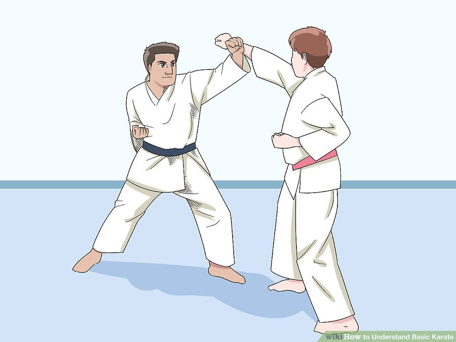 https://www.wikihow.com/images/thumb/d/d6/Understand-Basic-Karate-Step-7-Version-3.jpg/aid25376-v4-900px-Understand-Basic-Karate-Step-7-Version-3.jpg