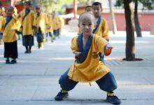 Photo of آموزش کونگ فو برای کودکان: چطور شروع کنیم؟