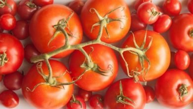 28 Food Storage Hacks - Keep your tomatoes out of the refrigerator.