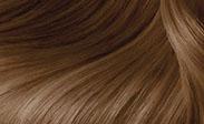 clairol hair color butterscotch