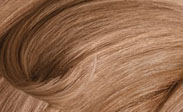 clairol hair color chart champagne
