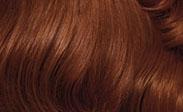 clairol hair color light auburn