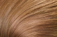 l'oreal hair color caramel