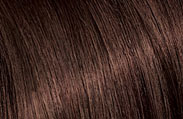 l'oreal hair color chart french toast