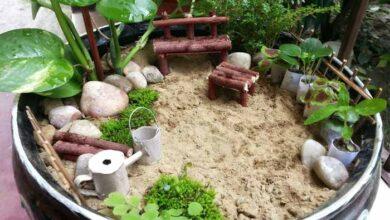 باغچه زینتی