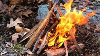 آتش ایمن در طبیعت