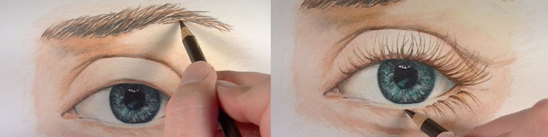 Draw the eyebrows and eyelashes.