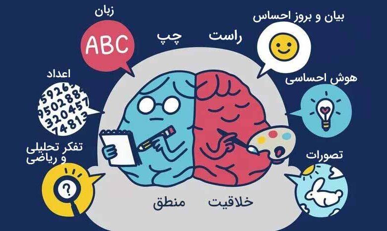 چپ مغز و راست مغز