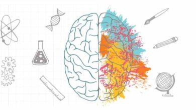 چپ مغز راست مغز