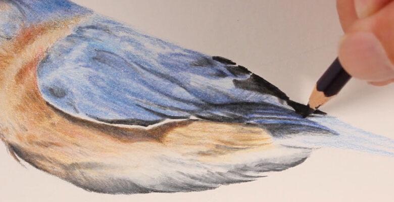 نقاشی با مداد رنگی 4
