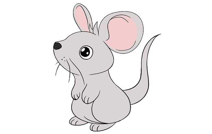 تصویر نهایی موش ترسیم شده
