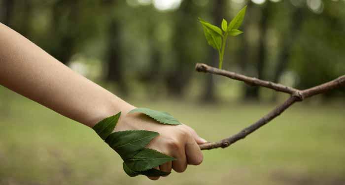 محیط زیست دوست