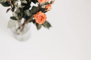 Orange Red Roses In A Clear Vase