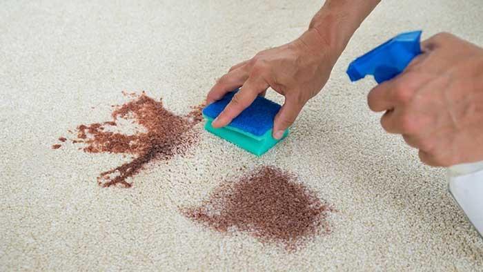 در حال تمیز کردن فرش