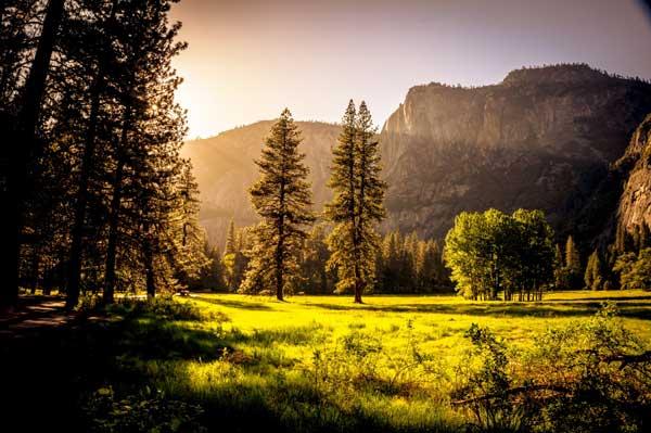عکاسی از طبیعت 1